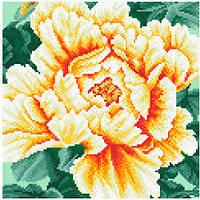 АМП-114. Набір алмазної мозаїки Розкішний піон (жовтий).