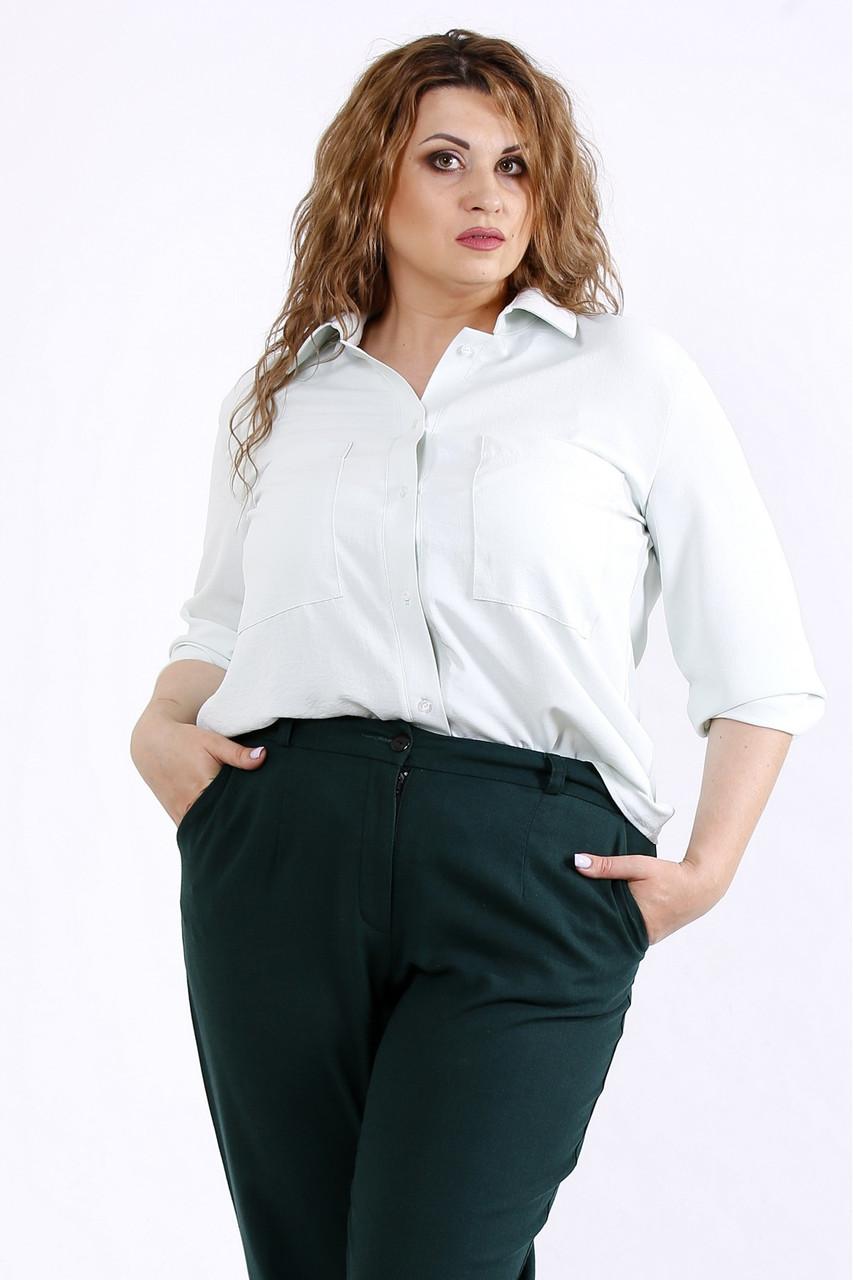01181-3   Світла легка блузка шавлія великий розмір