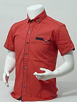 Рубашка подростковая с коротким рукавом для мальчика в точечку 12-16 лет цвет красный