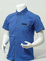 Рубашка детскаяс коротким рукавомдля мальчика в точечку стильная от 6до 11летцвет электрик