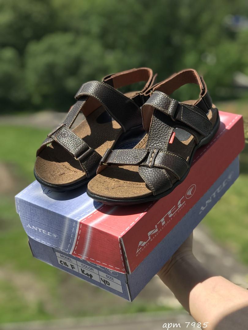 Мужские сандалии Antec (коричневые)