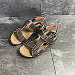 Мужские сандалии Antec (коричневые) , фото 3