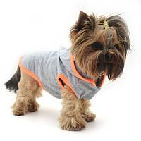 Жилет для собак Джек Той-теръер 25 х 34 см, фото 1