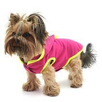 Жилет для собак Джек Малиновый, фото 3