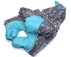 Комбинезон с капюшоном для собак Амур на подкладке omni-heat серый+бирюза мини 21х27
