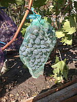 Сетка для защиты кистей винограда от ос, 31*55 см. (10 кг.)