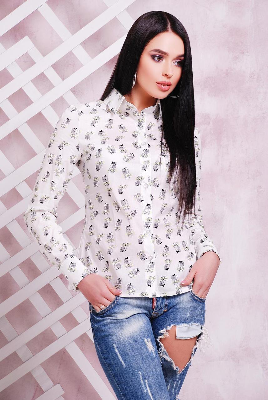 Классическая белая женская рубашка с ярким принтом Совы