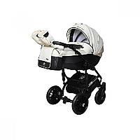 Детская универсальная коляска 2 в 1 Angelina Phaeton black star Comfort (1241010046-белая)