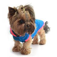 Жилет для собак Джек Той-теръер 23 х 30 см, фото 1