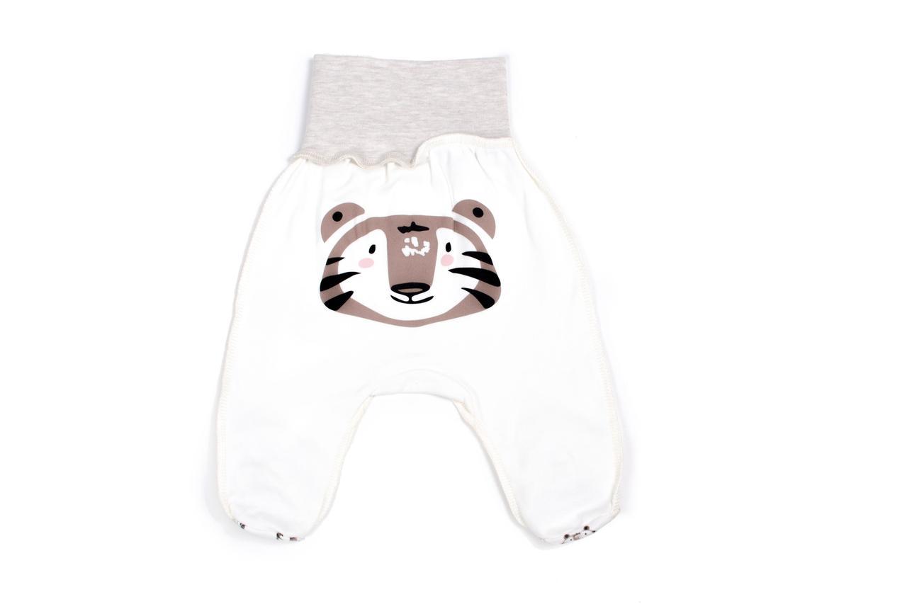 Ползунки для новорожденных Верес Crazy Zoo beige tiger интерлок  молочный