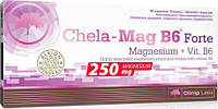 Магний с витамином Б6 Olimp Chela-Mag B6 Forte  60 сaps