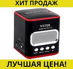 Портативная колонка USB CardReader FM WS-215