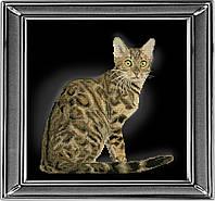 Набор для вышивки крестом КиТ 30912 Бенгальская кошка