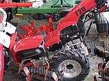 Мотоблок WEIMA WM720 (бензин 6,5 л.с., активная фреза), фото 2