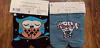 """Жіночі короткі шкарпетки""""Собачки та їх друзі Calze vita"""" 36-41"""