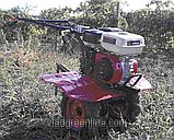 Мотоблок WEIMA WM900 NEW(бензин 7 л.с. чугун. редуктор), фото 5