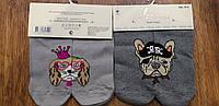"""Жіночі короткі шкарпетки""""Собачки та їх друзі Calze vita"""" 36-41 пірат та принцеса"""
