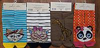 """Жіночі високі стрейчеві шкарпетки""""Calze vita"""" з малюнками"""