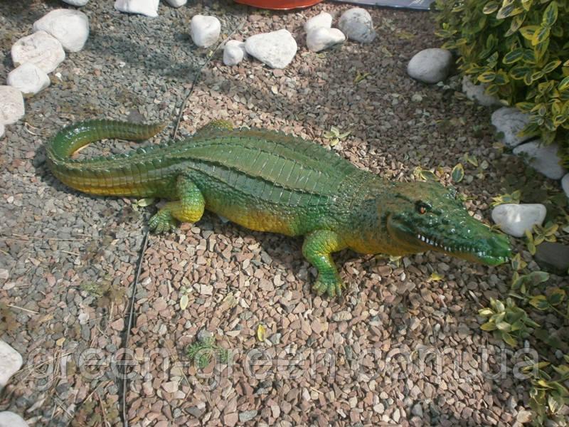 Крокодил Средний