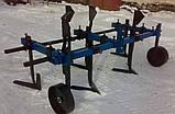 Культиватор сплошной предпосевной и междурядной обработки ТМ АРА (1,3 м), фото 2