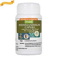 Патья Шадангам, 50 капсул Nupal Remedies (при всех видах головной, зубной боли, боли в ухе или глазах)