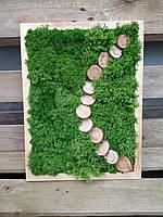 """Картина зі стабілізованого моху для інтер'єру """"Стежка через поле"""""""