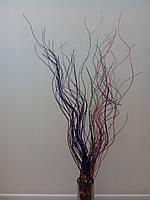 Сухоцвет Лоза цветная микс 95см