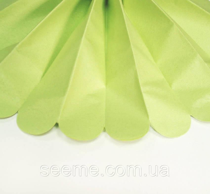 Бумажные помпоны из тишью «Leaf Green», диаметр 25 см.