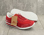 Мужские кроссовки Lacoste (красные) , фото 4