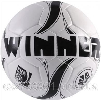 Мяч футбольный Winner Flame No.5, фото 2