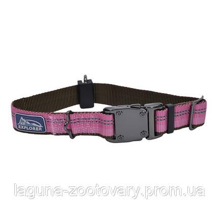 Coastal K9 Explorer ошейник для собак, нейлон, 2,5см/30-45 см, розовый, фото 2