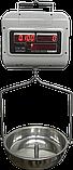 Весы подвесные Днепровес ВТД-ОСЕ до 30 кг, фото 2