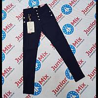 Подростковые котоновые брюки с начесом для девочек синего цвета оптом GRACE