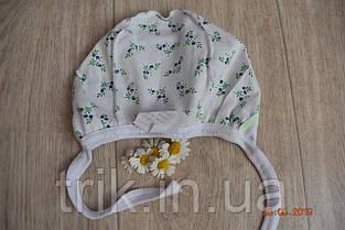 Чепчик детский TRIK расцветка сиреневая гвоздика, фото 3