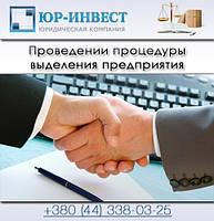 Проведении процедуры выделения предприятия