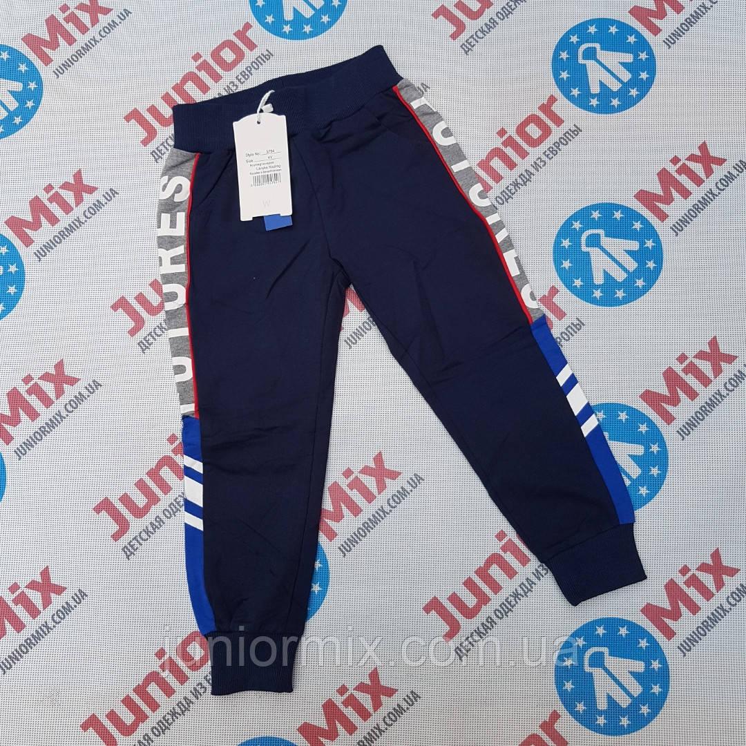 Трикотажные спортивные штаны для мальчиков оптом  F&D