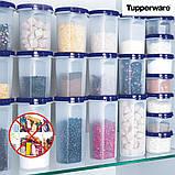 Вигідно купити Набір з 2 круглих Компактусов 440 мл 2 шт з герметичною кришкою і з клапаном Tupperware, фото 3