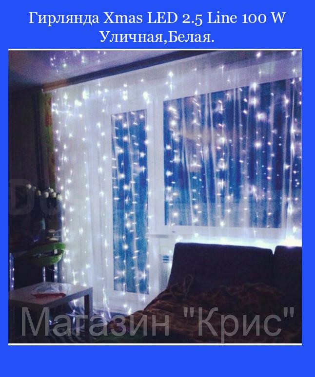 Гирлянда Xmas LED 2.5 Line 100 W Уличная,Белая.(60)!Акция