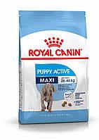 Royal Canin (Роял Канин) Maxi Junior Active корм для щенков крупных пород, 15 кг