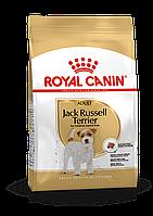 Royal Canin (Роял Канин) Jack Russell Adult корм для собак породы Джек-Рассел терьер, 1.5 кг