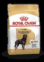 Royal Canin (Роял Канин) Rottweiler корм для ротвейлеров, 3 кг