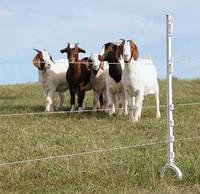 Электропастух для овец и коз