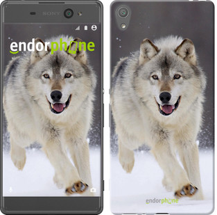 "Чехол на Sony Xperia XA Бегущий волк ""826c-399-571"""
