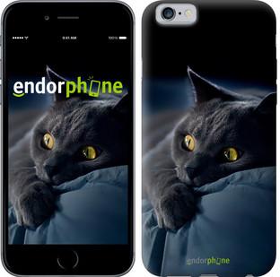 "Чехол на iPhone 6 Дымчатый кот ""825c-45-571"""