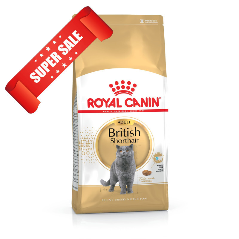 Сухой корм для котов Royal Canin British Shorthair Adult 4 кг