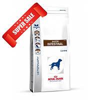 Лечебный сухой корм для собак Royal Canin Gastro Intestinal Canine 14 кг