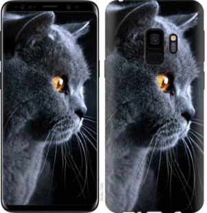"""Чехол на Samsung Galaxy S9 Красивый кот """"3038c-1355-19380"""""""