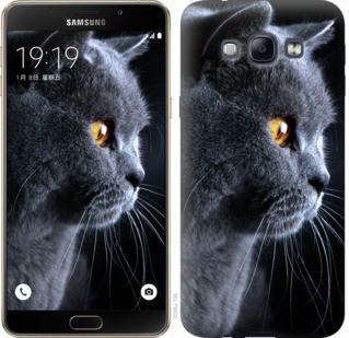 "Чехол на Samsung Galaxy A8 A8000 Красивый кот ""3038u-135-19380"""
