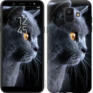 """Чехол на Samsung Galaxy A6 2018 Красивый кот """"3038c-1480-19380"""""""