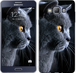 "Чехол на Samsung Galaxy A7 A700H Красивый кот ""3038c-117-19380"""